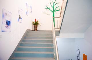 楼梯展示区