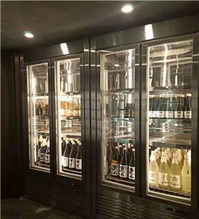 中型红酒柜